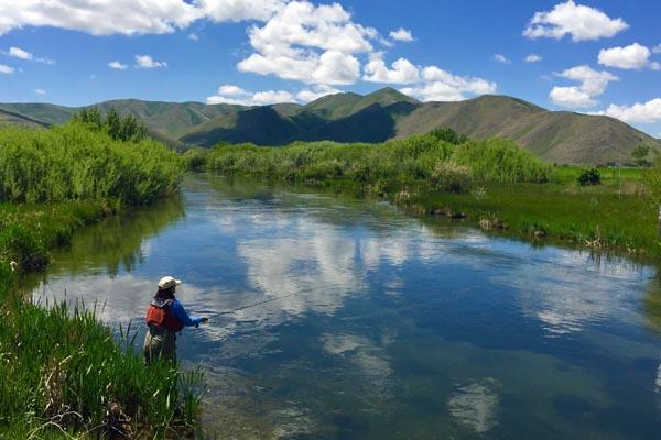 Fly fishing Silver Creek in Idaho