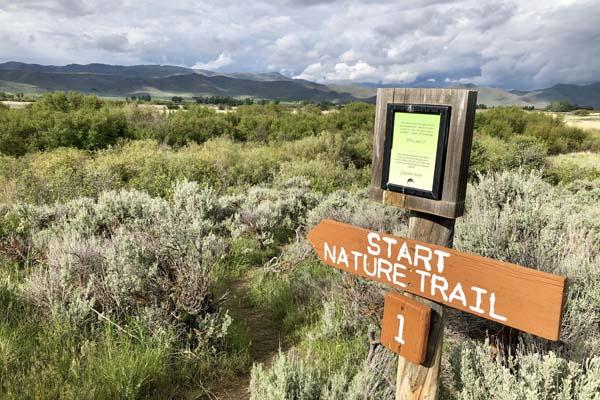 Stuart Nature Trail as Silver Creek Preserve