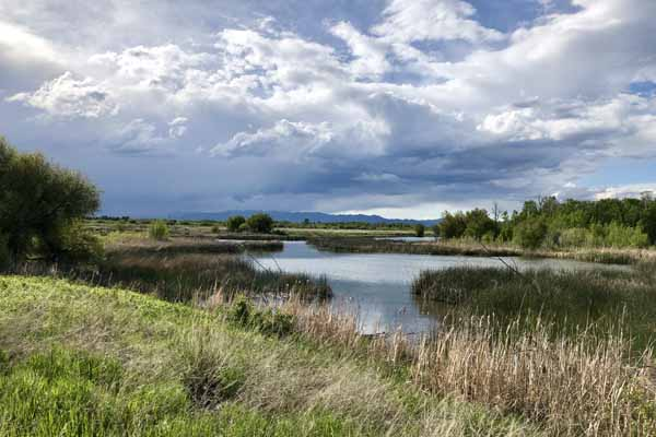 Sullivan Lake and Silver Creek