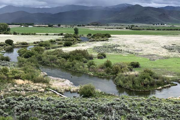 View of angler fishing Silver Creek in Idaho