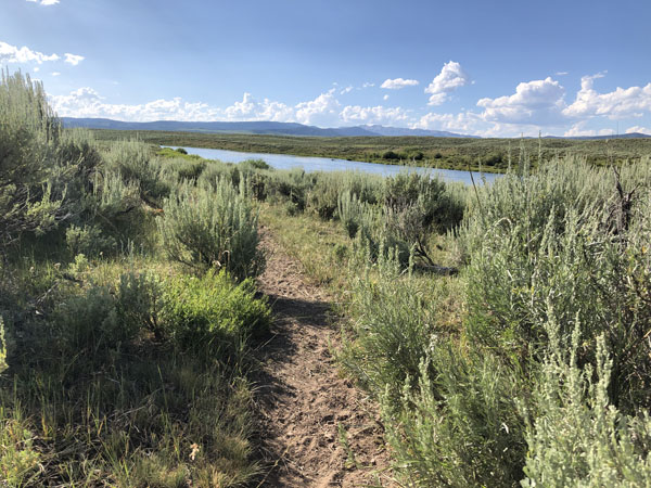 Fishing path along the Upper Green RIver in Wyoming