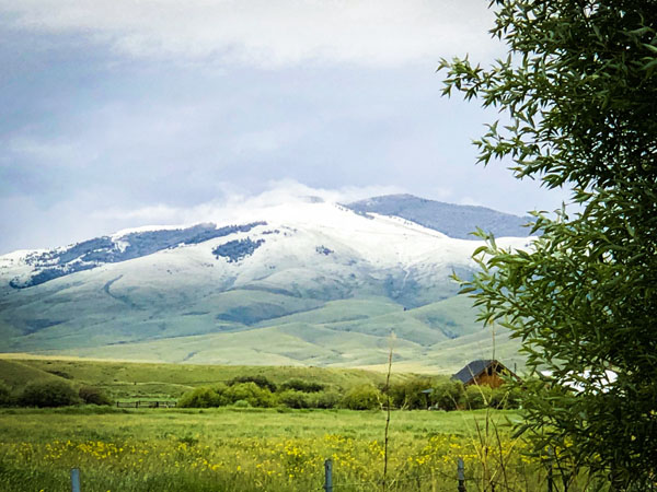 Snow capped mountains in June in Melrose Montana