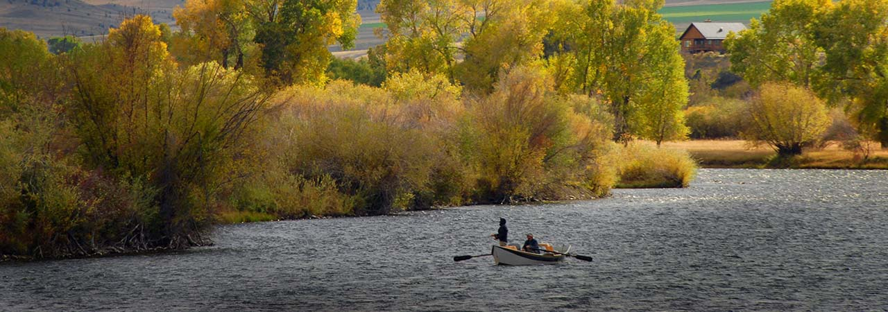 Madison River Foliage - Driftboat