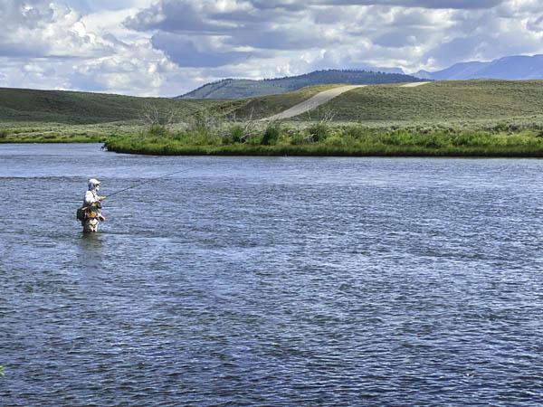 Fly fishing the Green River Above Warren Bridge