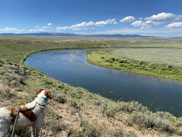 The Green River as it winds the sage desert