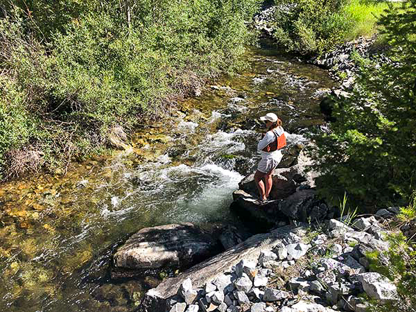 Catching Native Cutthroat Trout on the North Fork