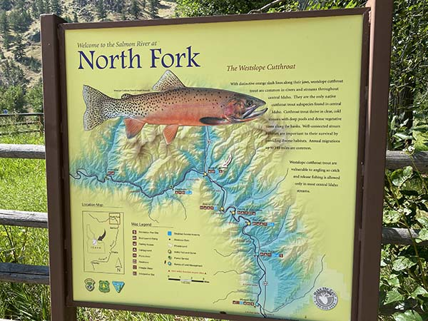 North Fork of the Salmon River Fishing Access