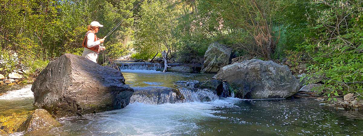 North Fork of the Salmon River in Idaho