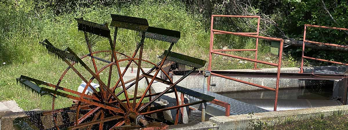 Water wheel on the North Fork of the Salmon River