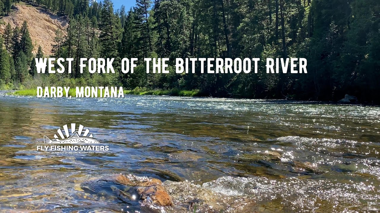west for bitterroot river video