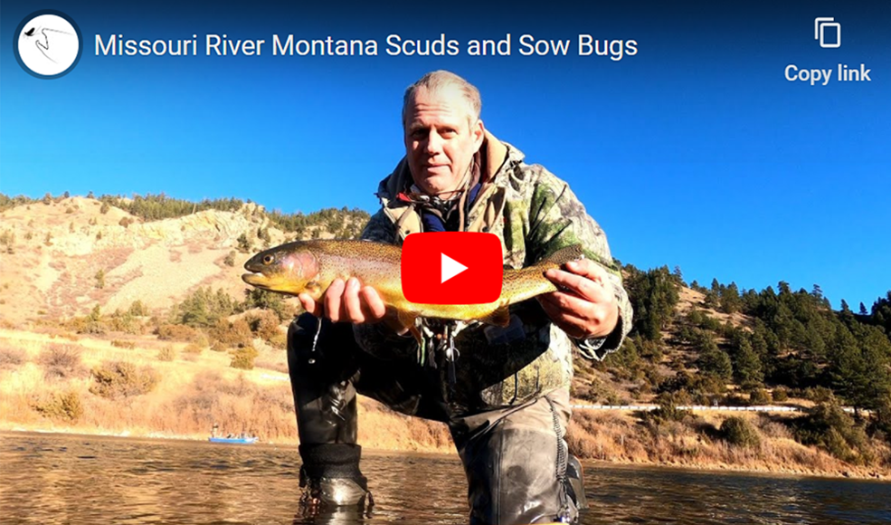 Rick Knight Scuds and Sow Bugs