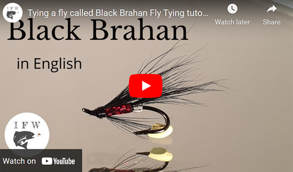 Tying a Black Brahan Fly