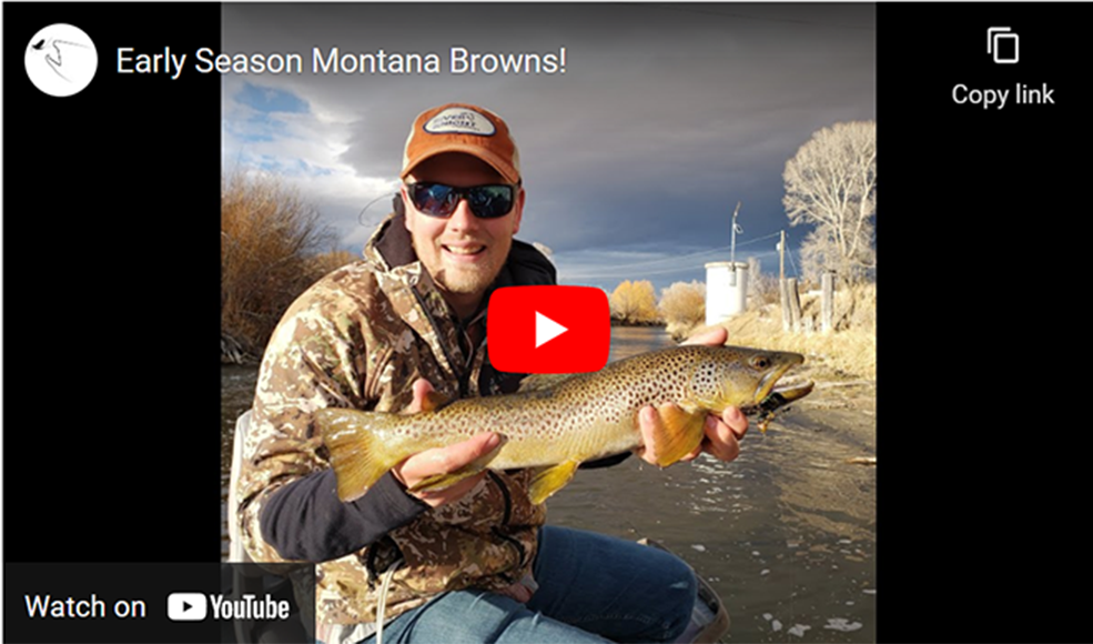 Streamer fishing in spring in Montana