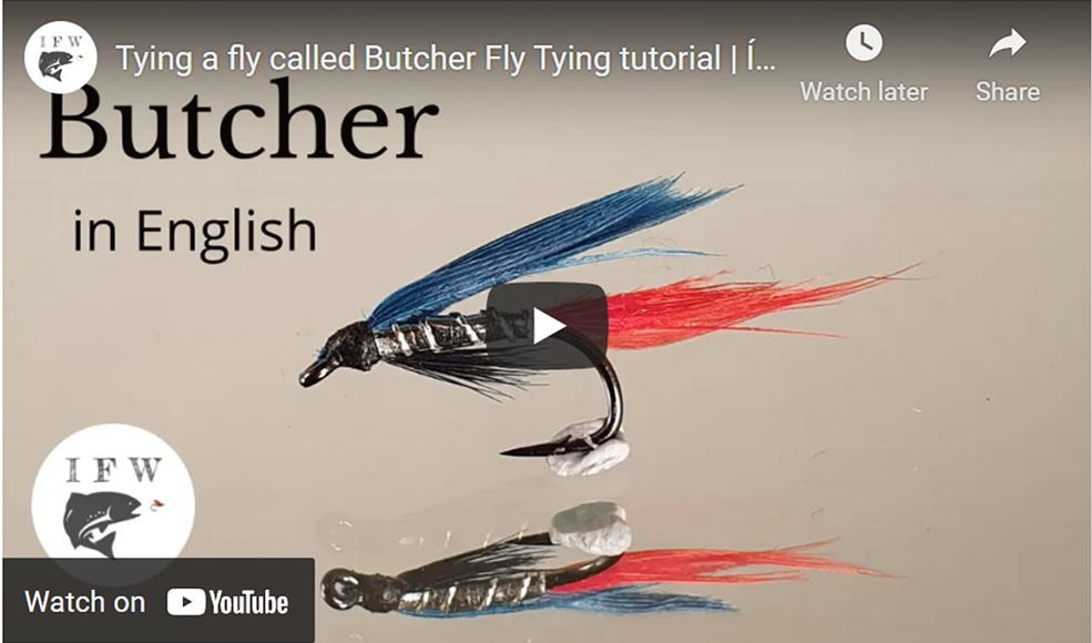 Tying a Fly Called a Butcher