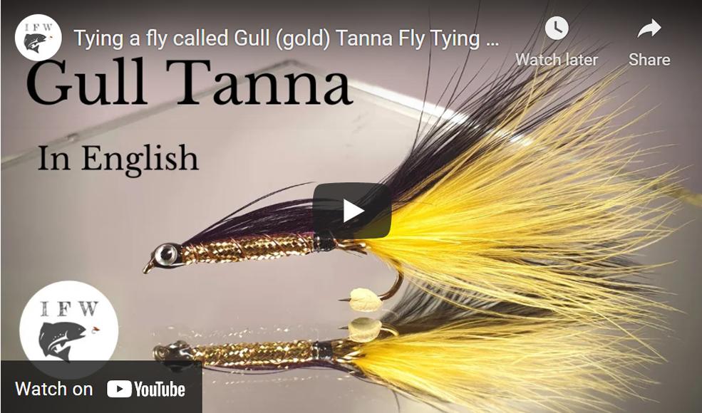 Tying a Gull Tanna