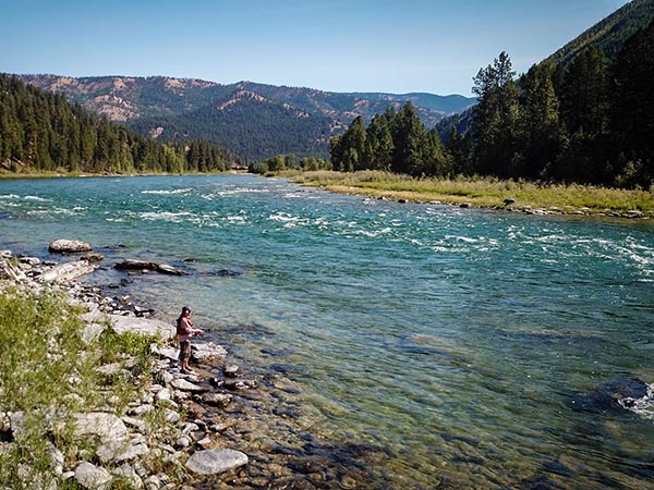 Wade Fishing the Kootenai River Near Libby MT