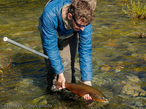 Trout fishing in Argentina